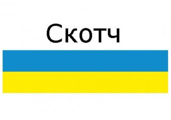 Skotch-s-logotipom-3